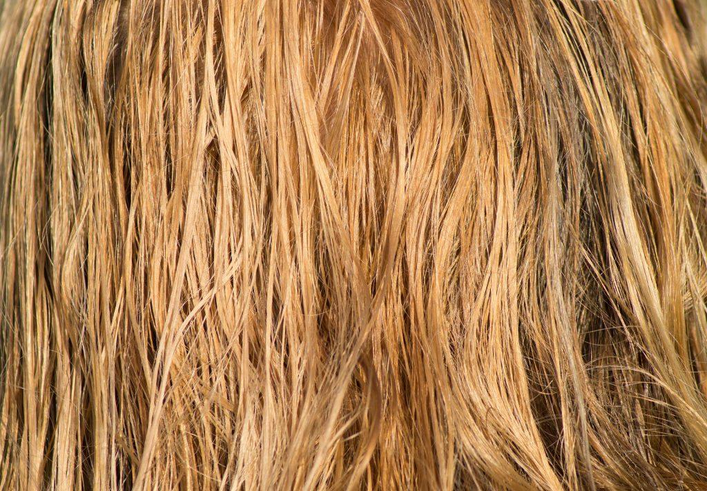 hair-breakage
